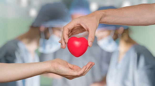 Organ bağışıyla ilgili doğru sanılan 10 yanlış!