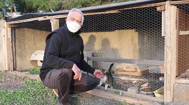 Yarım asırlık turizmciden pandemi mağduru kedilere barınak
