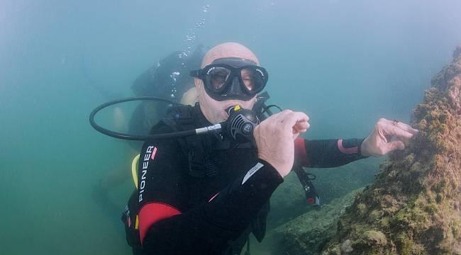 Müsilajdan eser yok, Körfez'de yüzme hedefine yaklaşıyoruz!